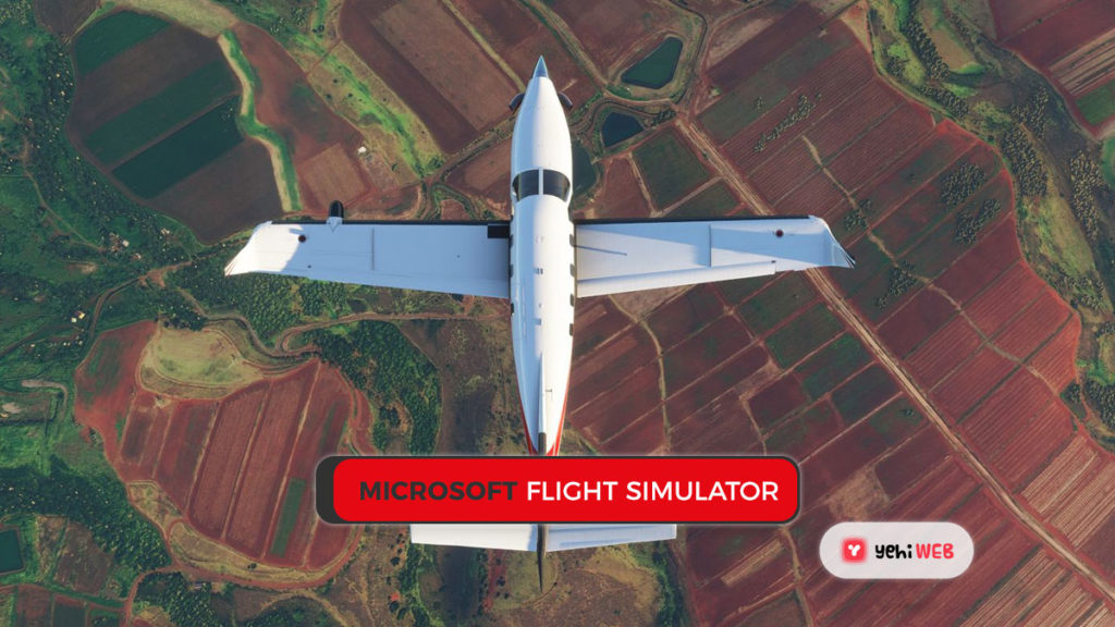 MICROSOFT Flight Simulator game Yehiweb
